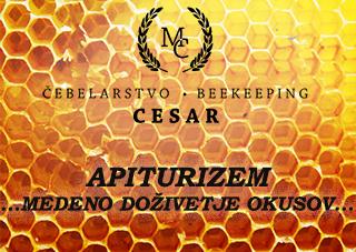 APITURIZEM_CEBELARSTVO_CESAR_MEDENO_DOZIVETJE_OKUSOV_LOGO.jpg