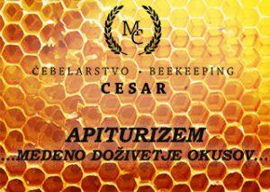 APITURIZEM_CEBELARSTVO_CESAR_MEDENO_DOZIVETJE_OKUSOV_LOGO